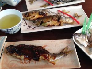 川口ヤナ 鮎料理