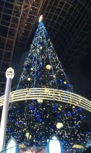 京都駅ツリー見上げ